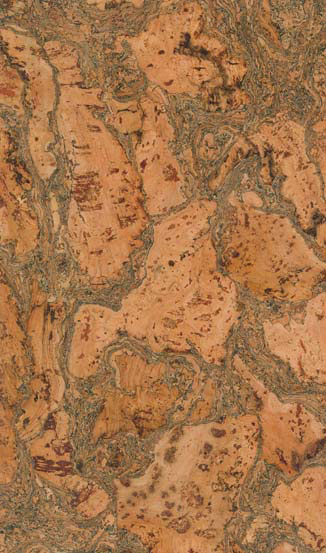 Lisbon Cork Floor