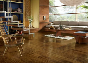 Sales Hardwood Flooring Installation Installation Wooden Floors Repairing Repairs Floor Sanding & Refinishing